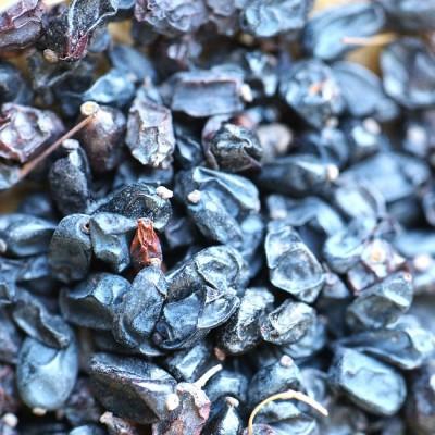 Барбарис черный, сушеный – 50гр и 100гр