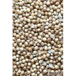Кориандр зерно - 50гр и 100гр