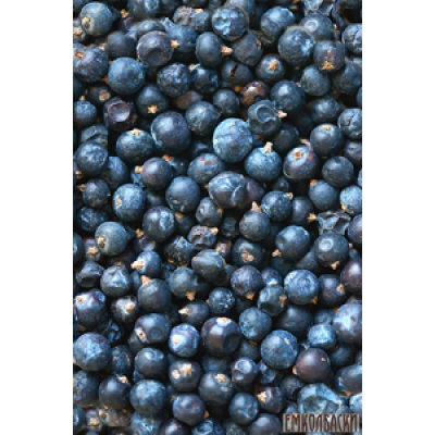 Можжевеловая ягода – 50гр и 100гр